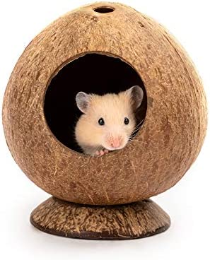 andwe Coconut Hut Hamster House Bed for Gerbils Mice Small Animal Cage Habitat Decor product image