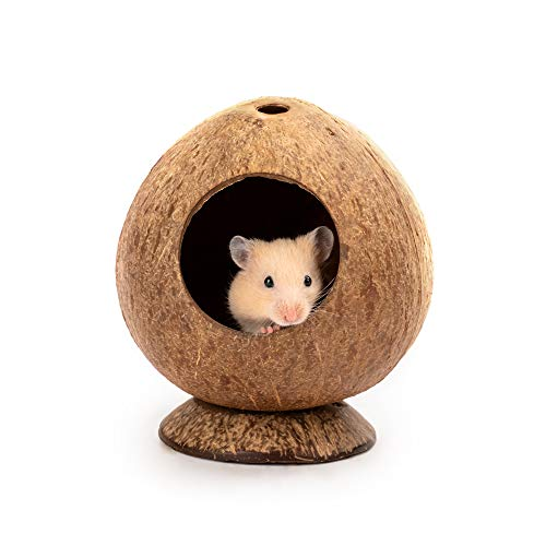 andwe Coconut Hut Hamster House Bed: for Gerbils Mice Small Animal Cage Habitat Decor