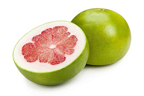 Red Pomelo Citrus Maxima Grandis Pamplemousse Jabong Shaddock Seeds 10 PCS