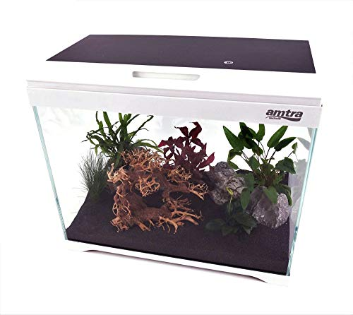 Amtra Technik Nano Aquarium Modern Tank 40 Komplettaquarium LED Beleuchtung Innenfilter Filteranlage Aquarium Aquascaping
