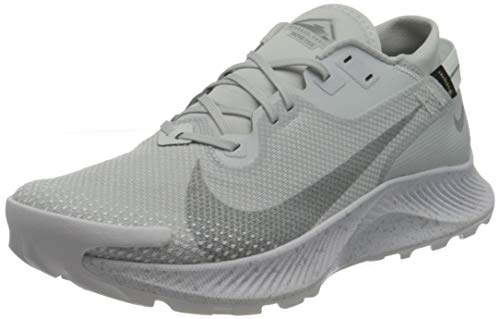 Nike Pegasus Trail 2 Gore-Tex, Zapatillas de Gimnasio Hombre, White White Pure Platinum Lt Smoke Grey, 42.5 EU