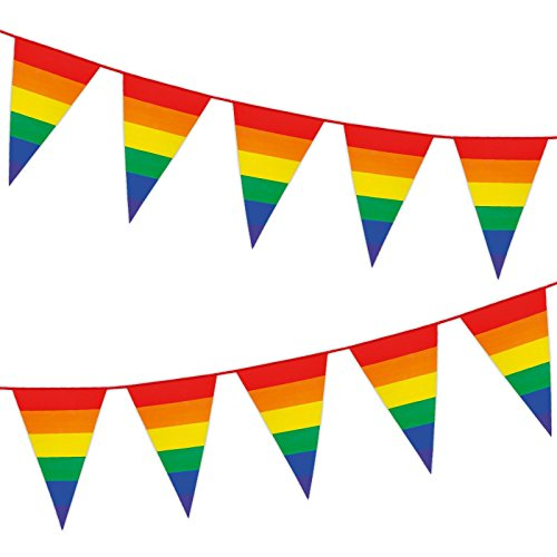 Fancy Dress VIP 8m Striped Rainbow Pennant Bunting Gay Pride Colourful Surprise Birthday Party Celebration Picnic Decoration Garland Flag
