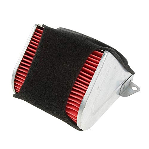 Filtro de aire coche, Piezas de moto del scooter del filtro de aire del triángulo