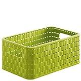Rotho Country Scatola di stoccaggio 6l, Plastica PP senza BPA, Verde, A5/6l 28.0 x 18.5 x 12.6 cm