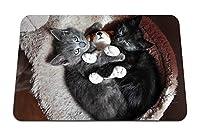 22cmx18cm マウスパッド (子猫カップルおもちゃ嘘) パターンカスタムの マウスパッド