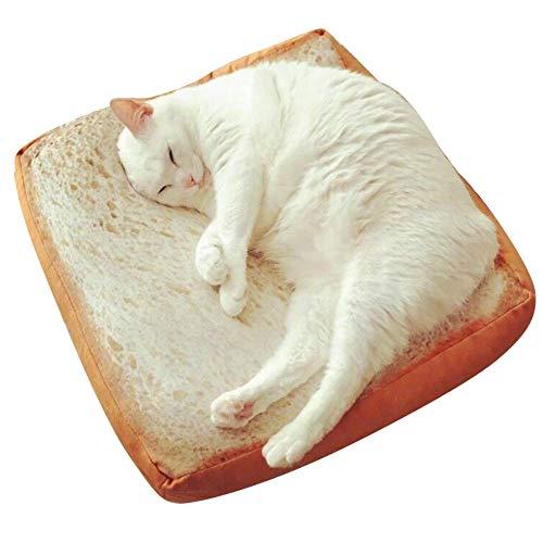 dfsa Cojín Microblogging con el párrafo lindo vida real tostadas rodajas de pan cojines de pan, gato especial de pan de dibujos animados alrededor