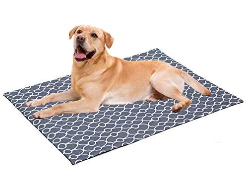 Geyecete Waterdichte hondendeken, Liquid Pee Proof deken voor slaapbank, zachte pluche gooi beschermt bank, stoelen, auto of bed tegen morsen, vlekken of huisdier Fur-Machine Wasbaar