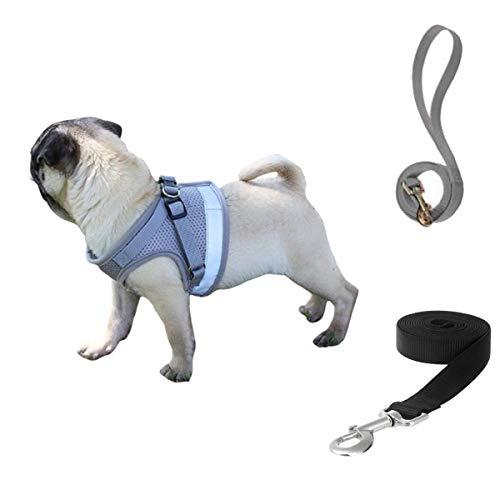 Arnés Perro Chaleco, Transpirable Chaleco Acolchado Ajustable Reflectantes Arnés Deportivo para Perros, para Viajar Pasear con Mascota Pequeña Gatito y Cachorro (M, Gris-Plata)