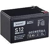 Accurat 12V 12Ah Blei-Akku AGM Blei-Batterie Zyklenfest Supply-Serie VRLA Versorgungsbatterie S12 (wartungsfrei)