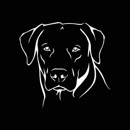 Empty 3 Stück Auto Aufkleber 15.3X14.5CM Labrador Hund wasserdicht reflektierende Auto Aufkleber für Fenster Laptop Motorrad Fahrrad Gepäck Graffiti Patches Aufkleber