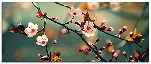 Artland Glasbilder Wandbild Glas Bild einteilig 125x50 cm Querformat Natur Botanik Blumen Blüten Japan Kirschblüte Asien Zweig Frühling T5VP