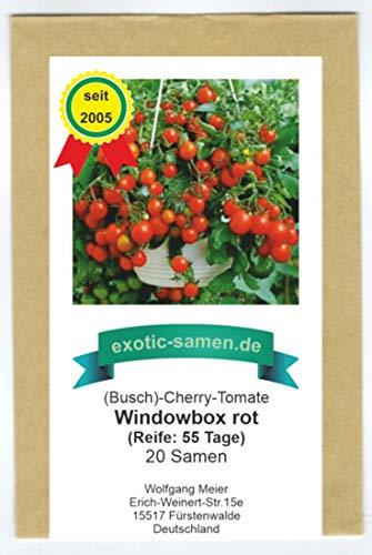 Balkontomate - Strauchtomate - rote Cherry-Tomate - Windowbox red - 20 Samen