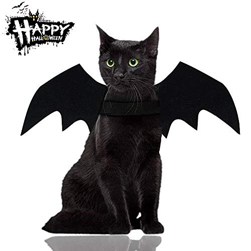 Malier Halloween Cat Costume for Cats Dogs Pet Bat Wings Cat Dog Bat Costume Wings (Small)