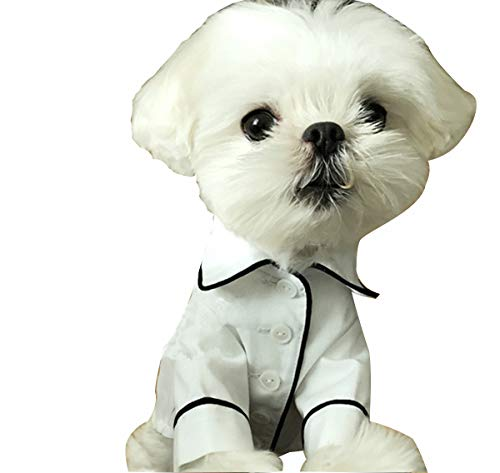 ODOKEI Vestidos para Perritas Mascotas Perro Ropa Abrigo Sudadera Invierno Mascota Perro Ropa Animales Dog Pet Clothes