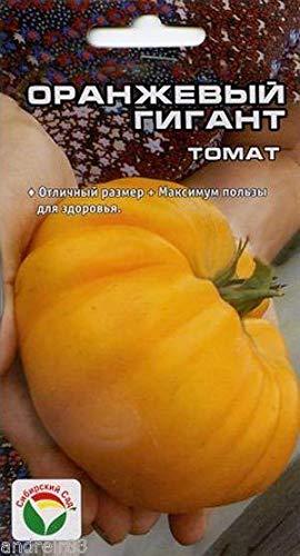 Portal Cool Samen von Tomate orange Riesen 20 Samen sibirischen Garden Tomato orange S0330