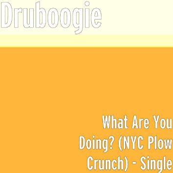 What Are You Doing? (Nyc Plow Crunch)