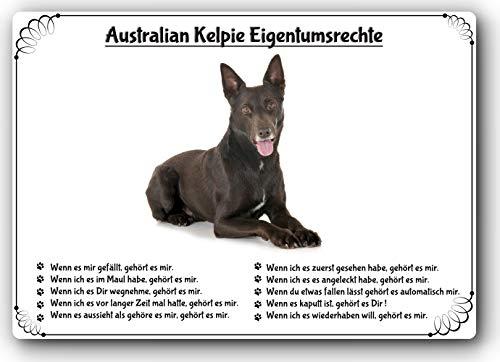 Merchandise for Fans blikken bord, waarschuwingsbord, deurschild, aluminium, motief: Australian Kelpie (01) 30x40 cm