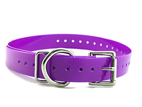 "Sparky Pet Co - Purple, Roller Buckle 3/4"" Replacement Collar - Compatible with Garmin, Delta, Dogtra, SportDOG, E Collar, Tri Tronics, Educator, E Collar Systems"