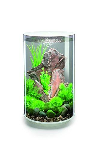 OASE biOrb TUBE 30 LED Aquarium, 30 Liter - Aquarien Komplett-Set mit LED Beleuchtung und patentiertem Filter-System, Acryl-Becken in Weiß