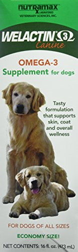 Nutramax Welactin Omega -3 Nutritional Supplement for dogs, 480 ML Liquid, 3-pack