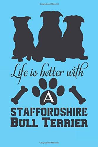 Staffordshire Bull Terrier Blue