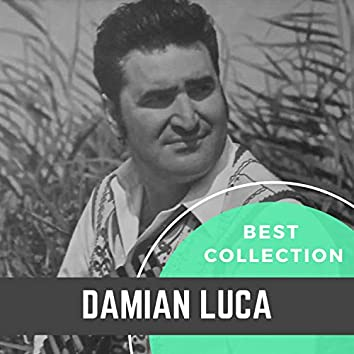 Best Collection Damian Luca