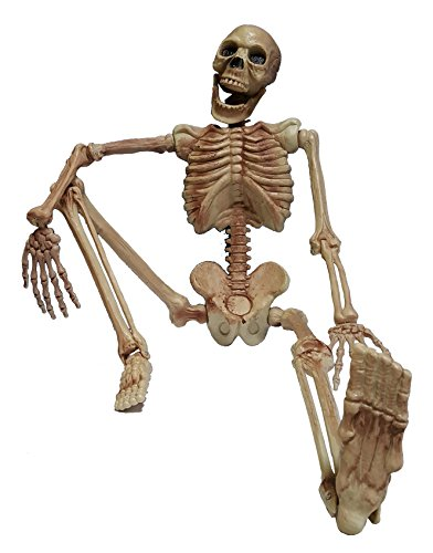 Cultica(R) Deko Figur Horror Skelett rundum plastisch komplett 1,1 Meter groß Grusel Gerippe Halloween Hänge Schocker