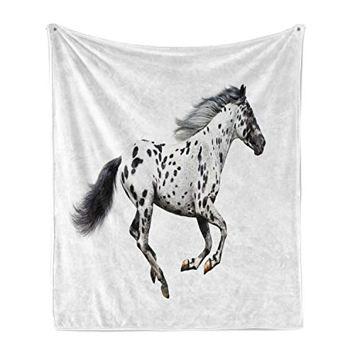 Lunarable Horse Soft Flannel Fleece Throw Blanket, Powerful Appaloosa Stallion Graceful Royal Pure Blood Champion Equine Print, Cozy Plush for Indoor and Outdoor Use, 50' x 70', Pale Black