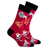 Socks n Socks-Men's Luxury Cotton Colorful Funky MONKEY Socks