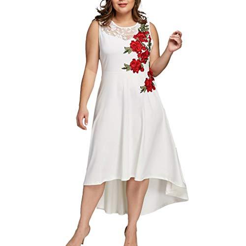 ReooLy Mujeres Tallas Grandes Cuello Apliques Cremallera Perspectiva Sin Mangas Malla Vestido Irregular(Blanco,XXXXL)