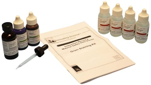 Innovating Science Gram's Stain Kit