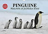 Pinguine - Watscheln im festlichen Kleid (Wandkalender 2022 DIN A3 quer): Koenigspinguine in ihrem natuerlichen Lebensraum (Geburtstagskalender, 14 Seiten )