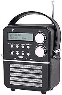 comprar comparacion Mini dl Dab Digital Radio con FM, Bluetooth y Reproductor USB, Función de Temporizador y Reloj Despertador con Batería Rec...