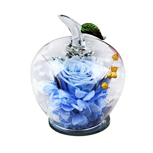 Rose préservée dans un verre en forme de pomme - Fait main - Superbe cadeau pour un être cher à Noël, la Saint-Valentin, la fête des mères, un anniversaire, un mariage bleu