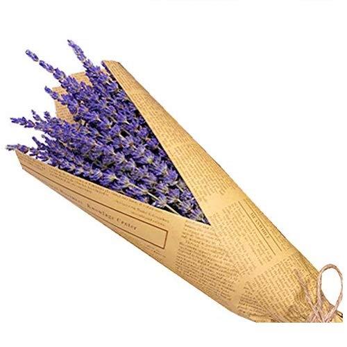 Haplws Lavendel-Strauß, Getrockneter Lavendelstrauß mit 100 Stängeln getrockneten Blumen Trockenblumen Lavendel Foto Requisiten