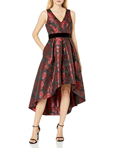 Eliza J Women's Floral Fit and Flare Dress Formal, Black/Red, 14