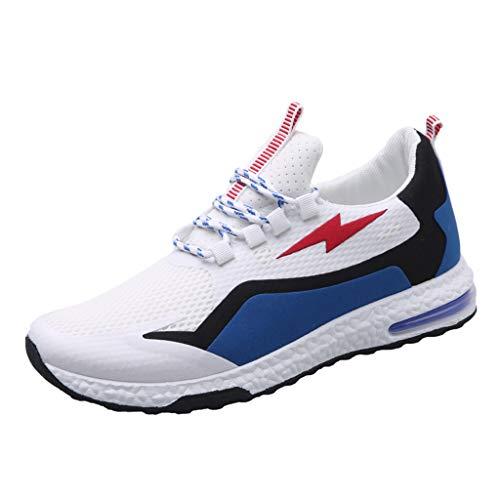 AIni Herren Schuhe Beiläufiges 2019 Neuer Heißer Mode Outdoor Casual Sportschuhe Korean Sneakers Mesh Solide Schuhe Freizeitschuhe Partyschuhe (40,Blau)