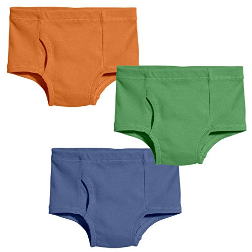 Product Image of the City Threads Organic Cotton Underwear