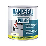 Polar White Anti Damp Paint 1 Litre, Damp Proof Paint Stain Blocker Seals in One Coat for Brick, Concrete, Cement and Plaster Walls, Damp Seal Matt Finish