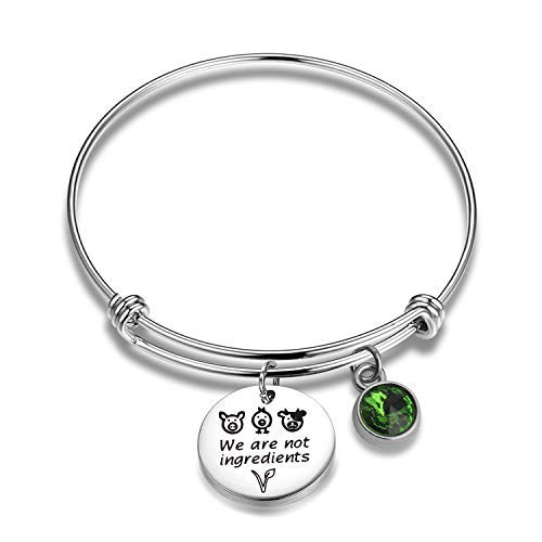 Vegetarian Jewelry Vegan Bracelet We Are Not Ingredients Animal Rights Bracelet Gift For Vegan Veganism Gift (Veganism Charm Bracelet)