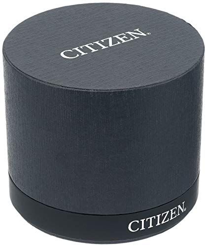 Citizen Relojes mujer FE2104-50A Eco-Drive