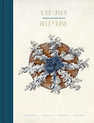Meduses - Jellyfish