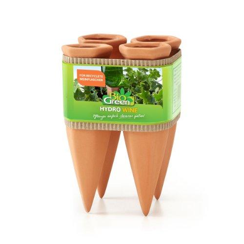 Bio Green -   Pflanzen