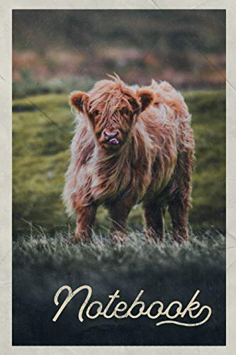 Notebook: Aberdeen Angus Cattle Excellent Composition Book Journal Diary for Men, Women,...