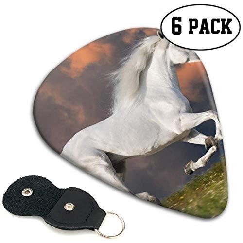 Horse Runs Freely On The Grassland gitaarpick voor meisjes flexibele gitaarpicks 6 pack heavy, elektrische akoestische gitaarsT
