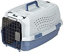 Best cat carrier for vet visit