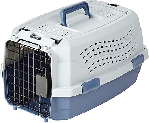 Amazon Basics Two-Door Top-Load Hard-Sided Pet Travel Carrier, 19-Inch