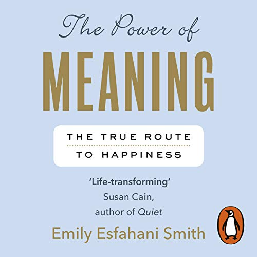 The Power of Meaning  By  cover art