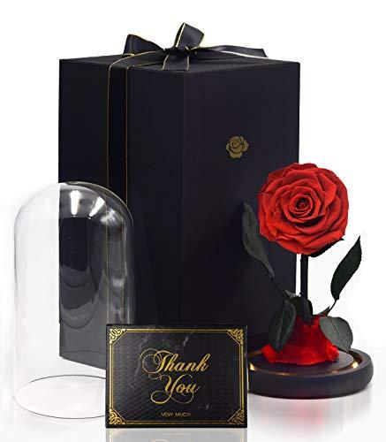 iteaauk Ewige Rosen, Echte Rosen, Infinity Rose, Die Schöne und das Biest Rosen Holzsockel LED-Licht für Valentinstag, Geburtstag, Hochzeit, Muttertag, Jubiläum, Weihnachtstag, Hauptdekor.