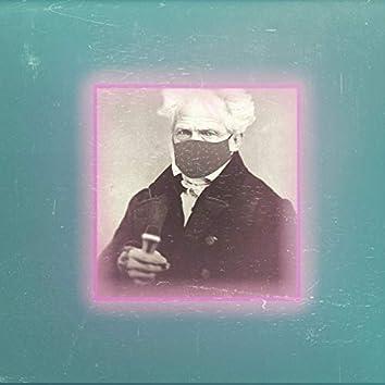 Arthur Schopenhauer - Il velo di Maya